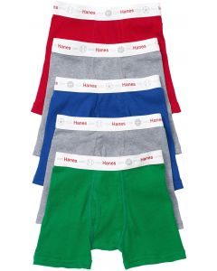 Hanes Toddler Boys Assorted Boxer Briefs - 5 Pack - TB74P5